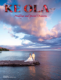Dec 2014–Jan 2015 wedding cover