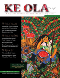 Nov–Dec 2010 cover