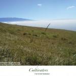 Cultivators-Kuulei-Keakealani