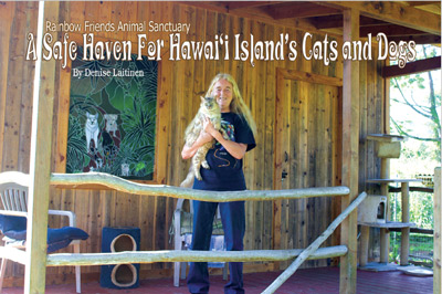 A Safe Haven For Hawai'i Island Cats and Dogs