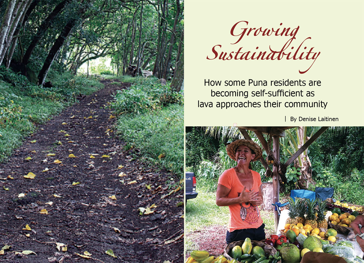 Growing Sustainability