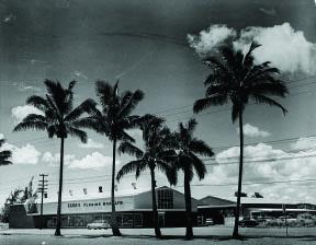 HPM Kamehameha Avenue 1955-1960