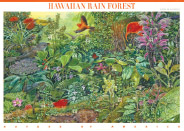 Hawaiian Rain Forest Stamp illustrated by John Dawson. photo of John's work courtesy of The Magic Mo, ArtPrintsHawaii.com